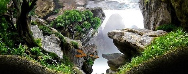 A hiking trail…