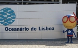 The ADA / Lisbon Oceanarium Commission has Completed